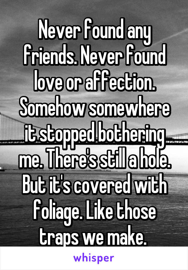Never found any friends. Never found love or affection. Somehow somewhere it stopped bothering me. There's still a hole. But it's covered with foliage. Like those traps we make.