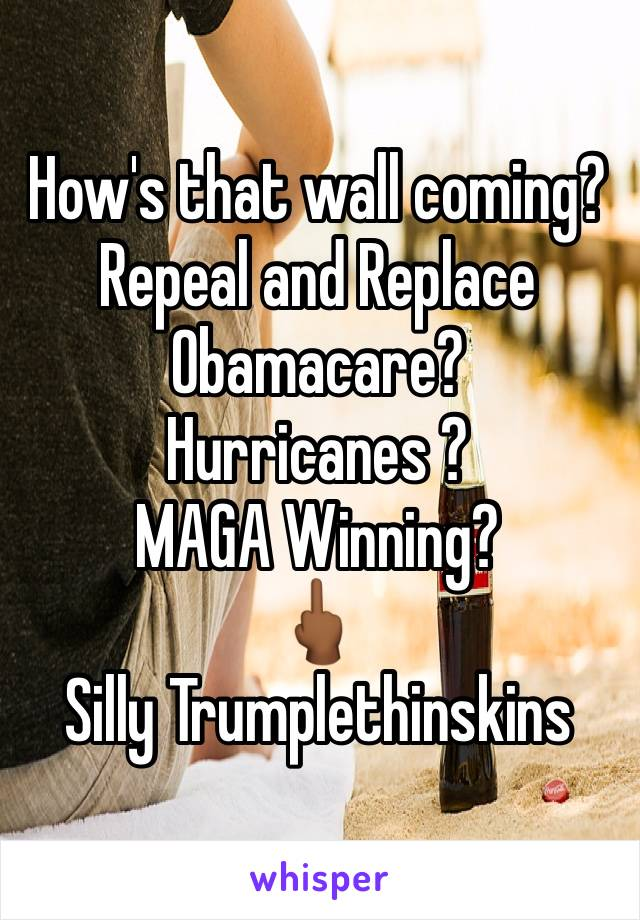 How's that wall coming? Repeal and Replace Obamacare? Hurricanes ? MAGA Winning? 🖕🏾 Silly Trumplethinskins