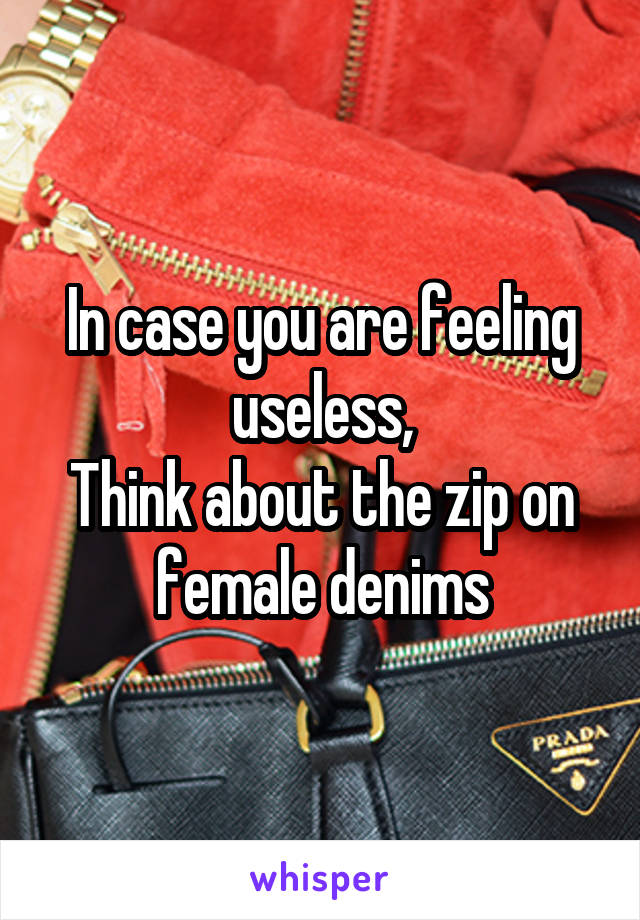 In case you are feeling useless, Think about the zip on female denims