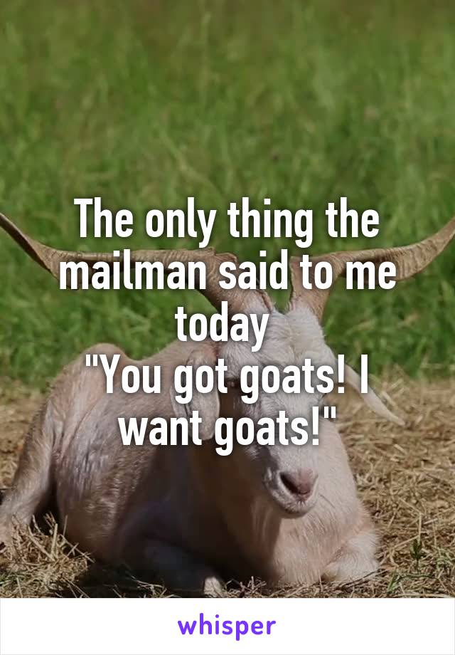 """The only thing the mailman said to me today  """"You got goats! I want goats!"""""""