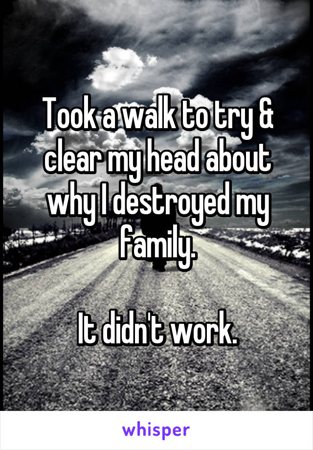 Took a walk to try & clear my head about why I destroyed my family.  It didn't work.
