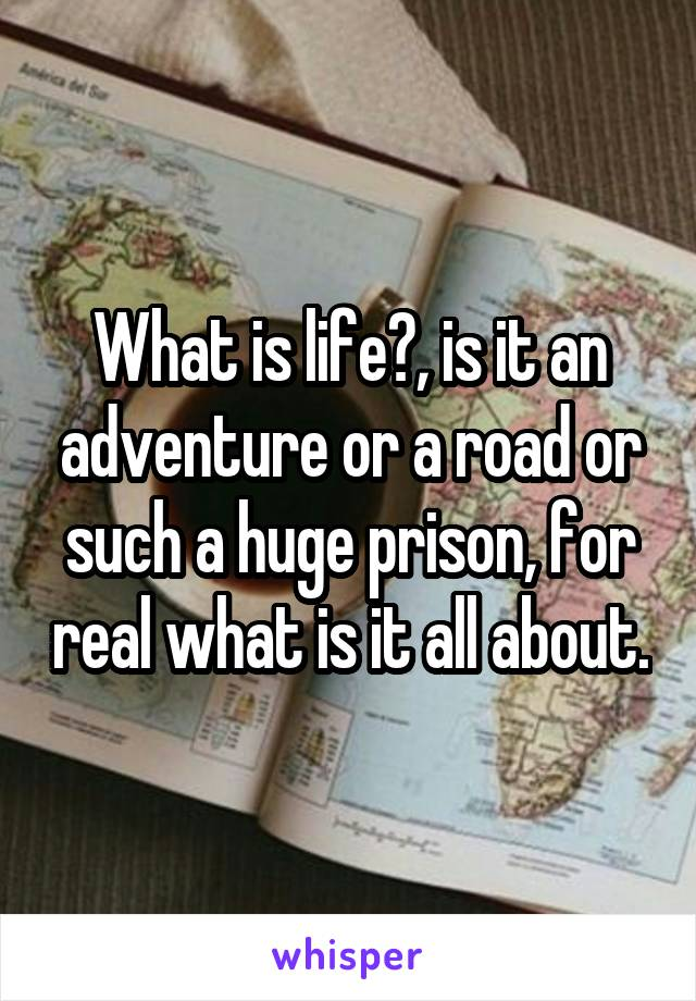 What is life?, is it an adventure or a road or such a huge prison, for real what is it all about.