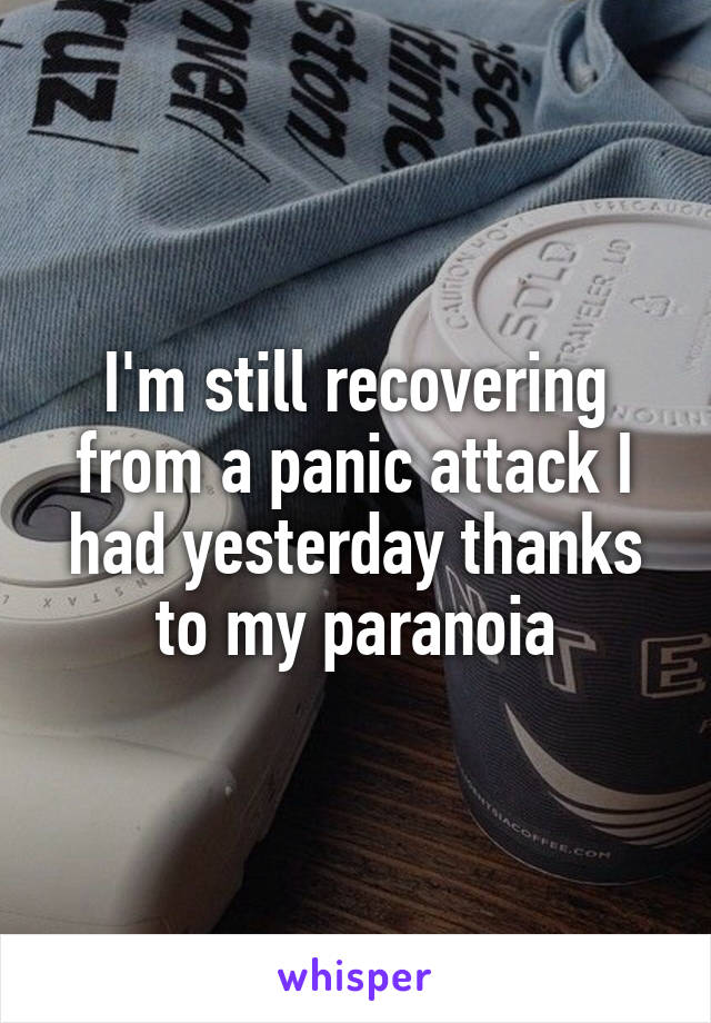 I'm still recovering from a panic attack I had yesterday thanks to my paranoia
