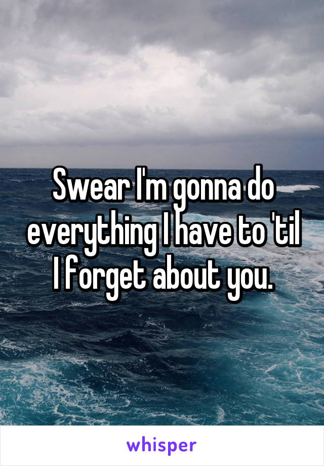 Swear I'm gonna do everything I have to 'til I forget about you.