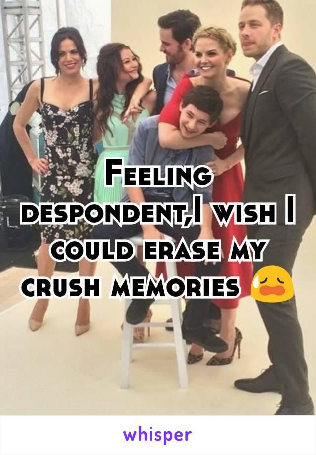 Feeling despondent,I wish I could erase my crush memories 😥