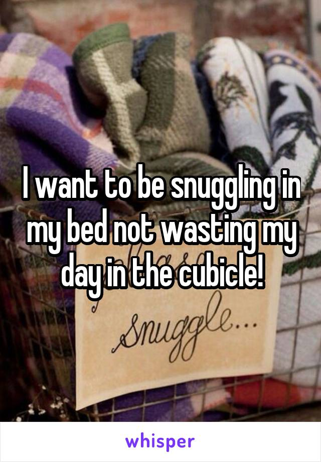 I want to be snuggling in my bed not wasting my day in the cubicle!