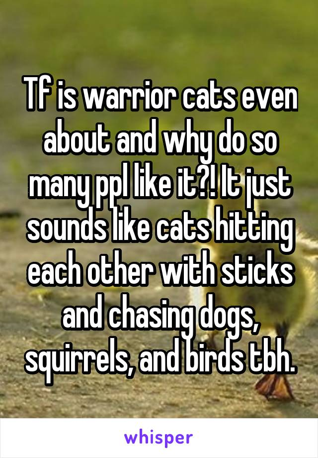 Tf is warrior cats even about and why do so many ppl like it?! It just sounds like cats hitting each other with sticks and chasing dogs, squirrels, and birds tbh.