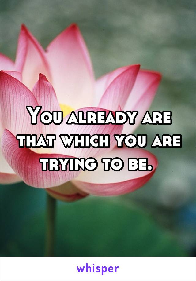 You already are that which you are trying to be.