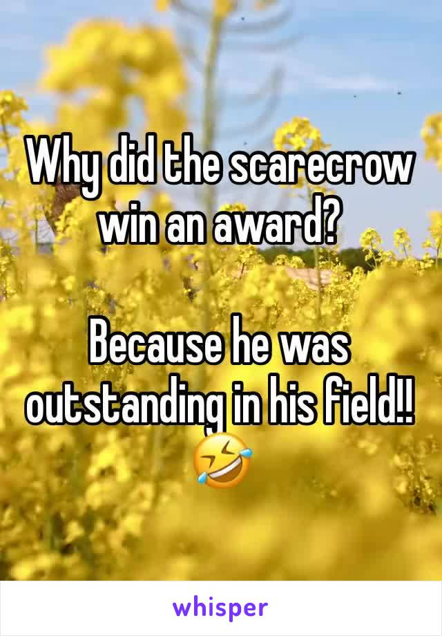 Why did the scarecrow win an award?   Because he was outstanding in his field!! 🤣