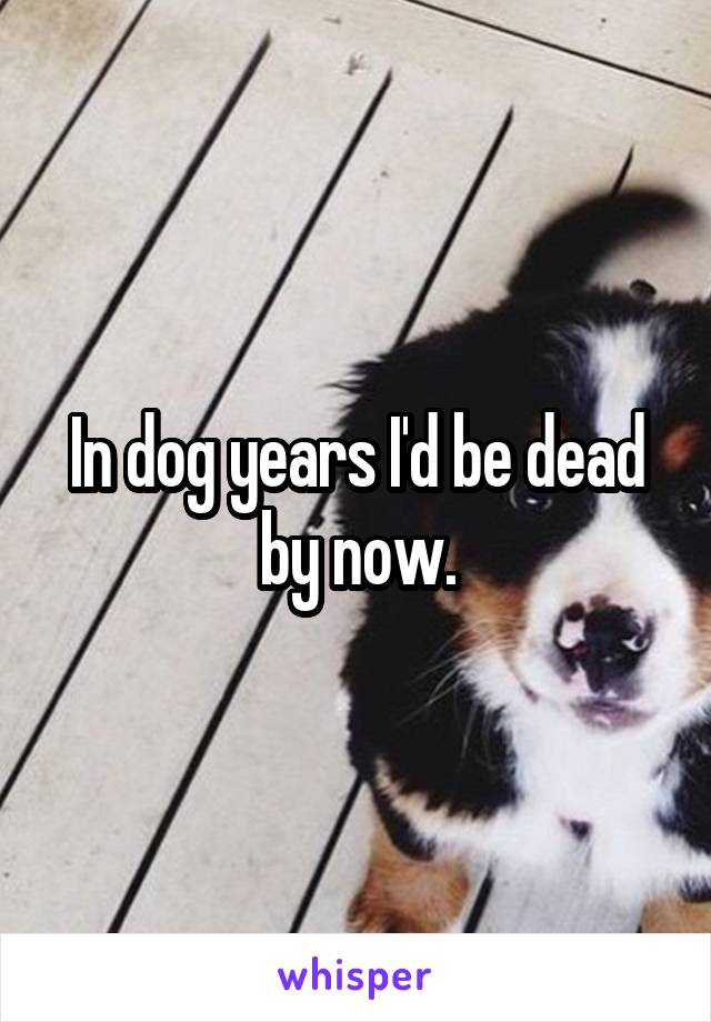 In dog years I'd be dead by now.