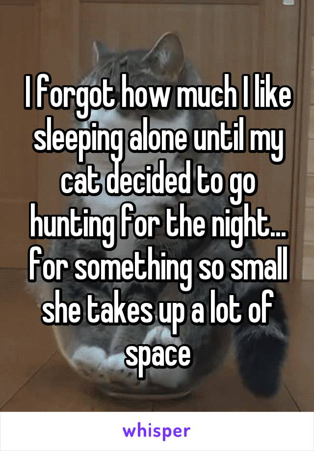 I forgot how much I like sleeping alone until my cat decided to go hunting for the night... for something so small she takes up a lot of space