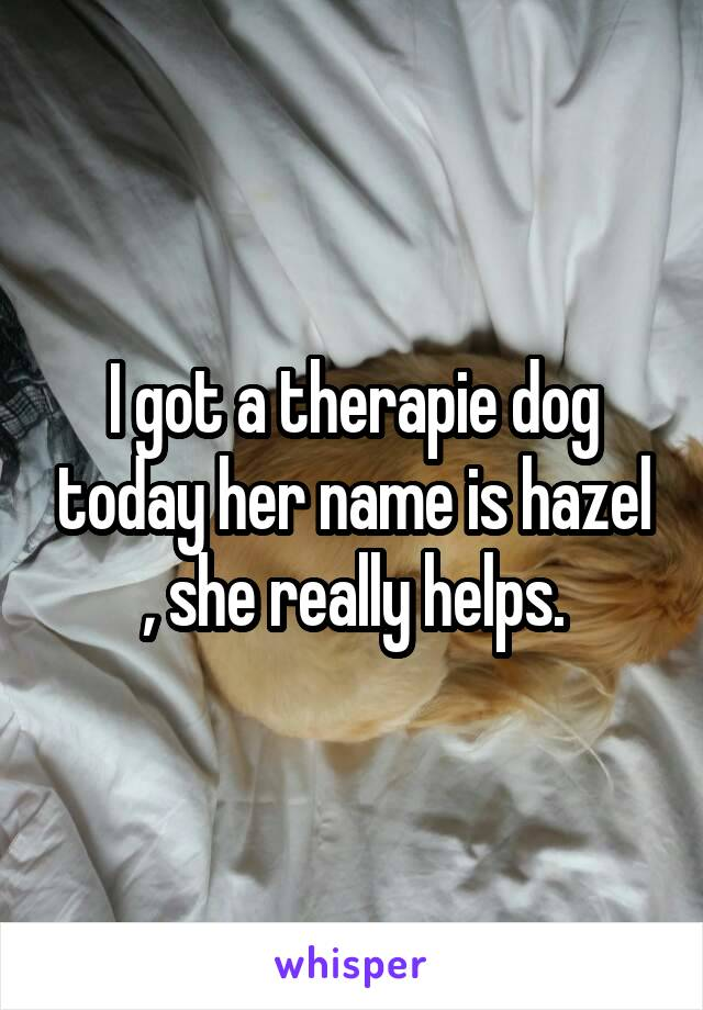 I got a therapie dog today her name is hazel , she really helps.