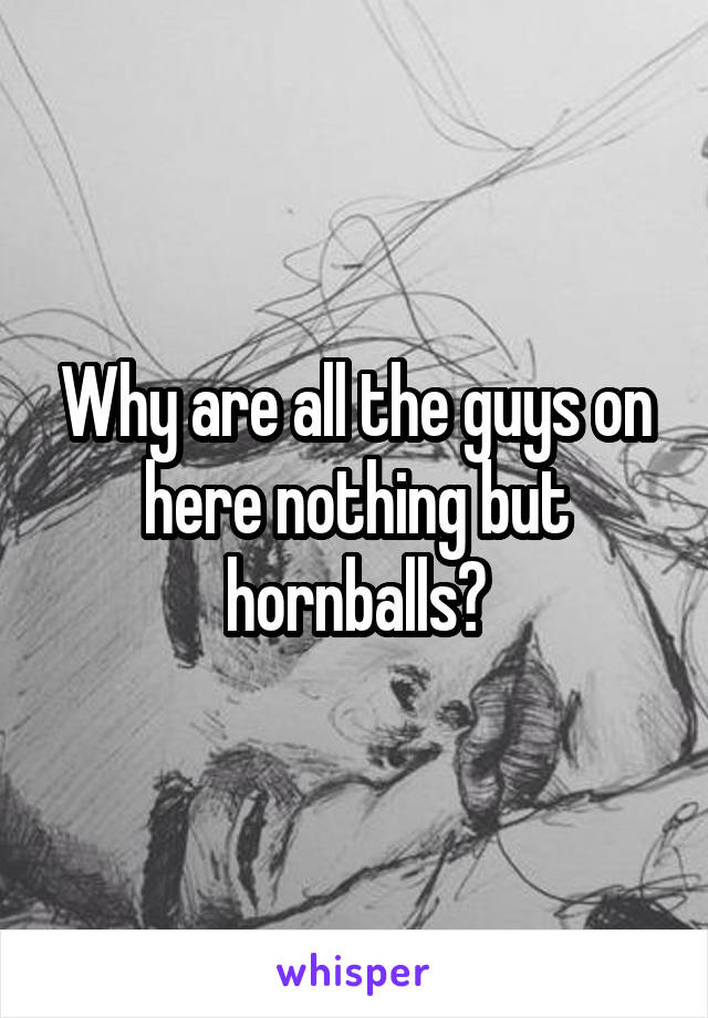 Why are all the guys on here nothing but hornballs?