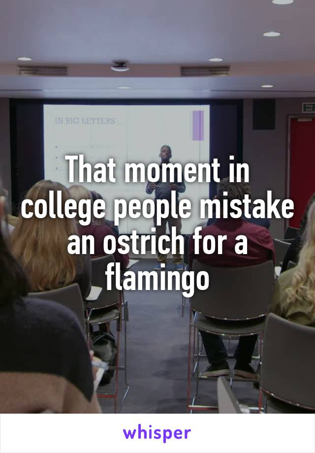That moment in college people mistake an ostrich for a flamingo