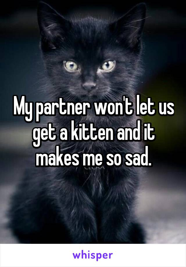 My partner won't let us get a kitten and it makes me so sad.