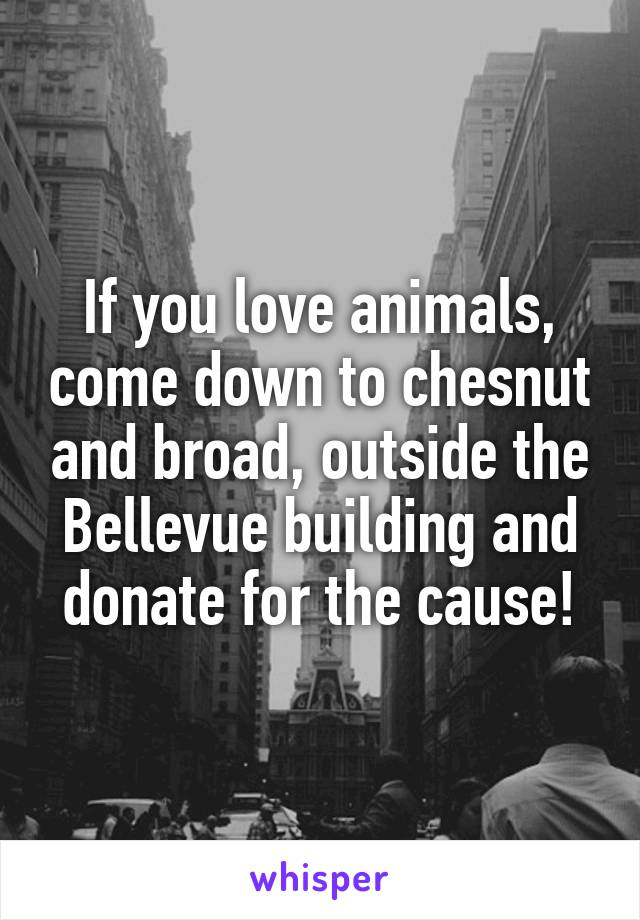 If you love animals, come down to chesnut and broad, outside the Bellevue building and donate for the cause!