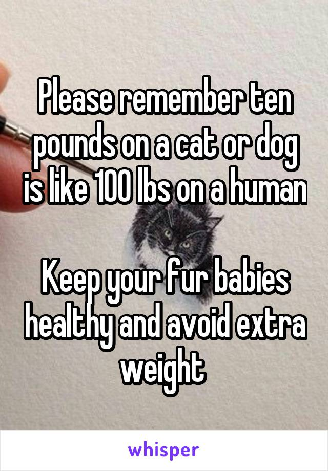 Please remember ten pounds on a cat or dog is like 100 lbs on a human  Keep your fur babies healthy and avoid extra weight