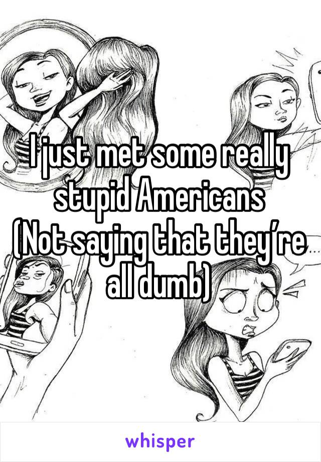I just met some really stupid Americans  (Not saying that they're all dumb)