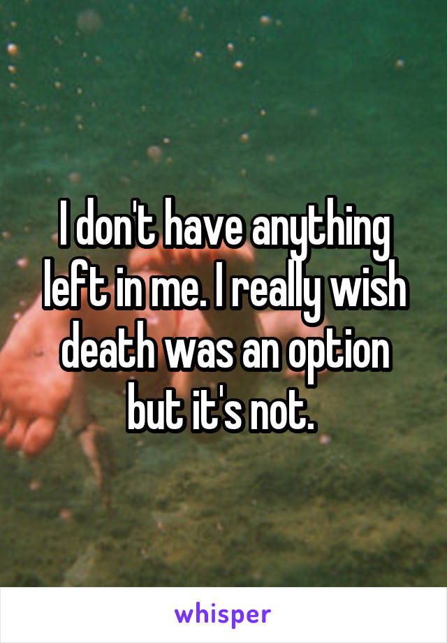 I don't have anything left in me. I really wish death was an option but it's not.