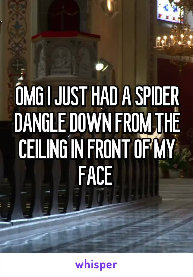 OMG I JUST HAD A SPIDER DANGLE DOWN FROM THE CEILING IN FRONT OF MY FACE
