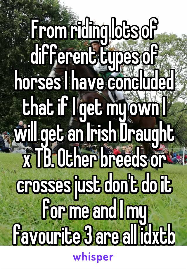 From riding lots of different types of horses I have concluded that if I get my own I will get an Irish Draught x TB. Other breeds or crosses just don't do it for me and I my favourite 3 are all idxtb