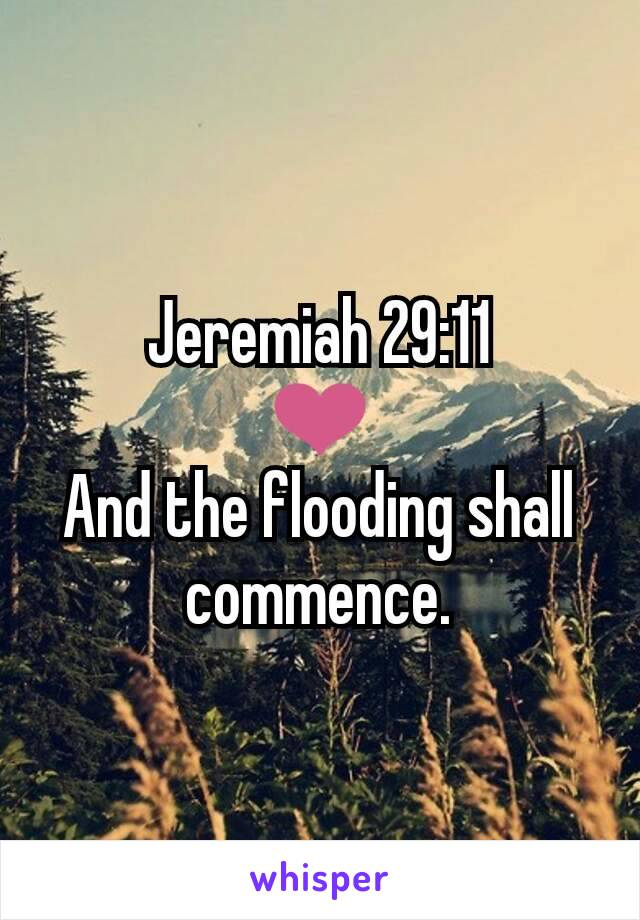 Jeremiah 29:11 ❤ And the flooding shall commence.