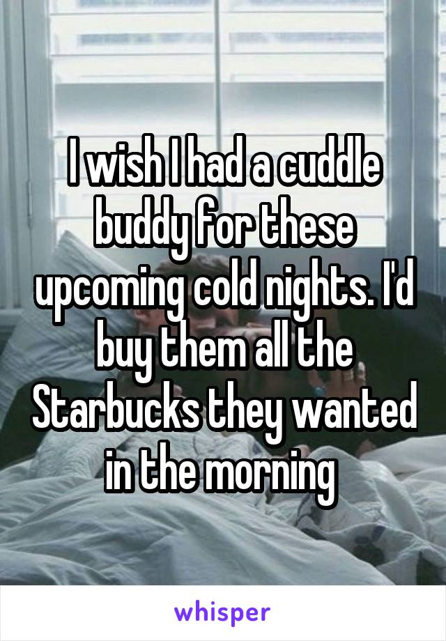I wish I had a cuddle buddy for these upcoming cold nights. I'd buy them all the Starbucks they wanted in the morning