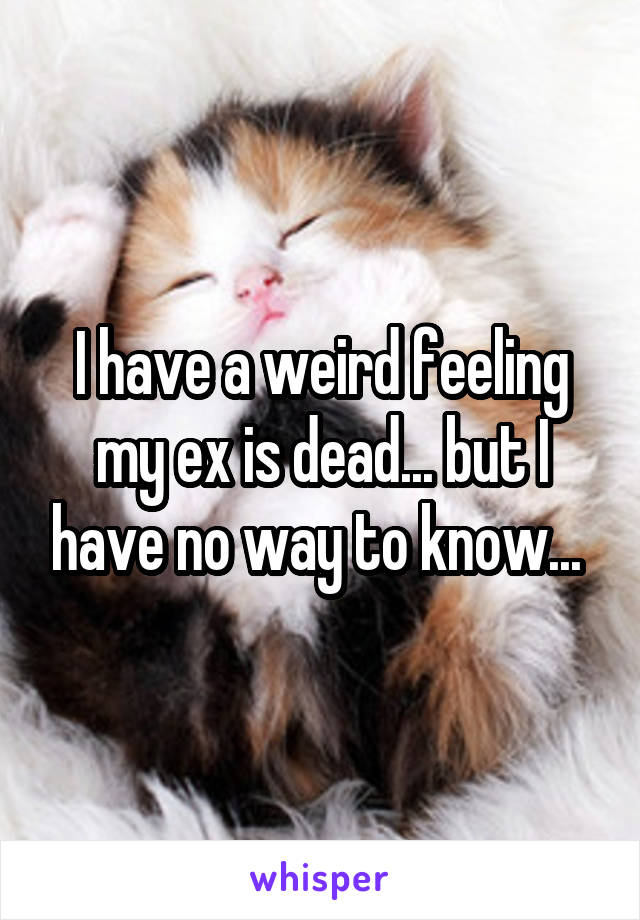 I have a weird feeling my ex is dead... but I have no way to know...
