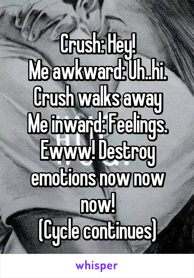Crush: Hey! Me awkward: Uh..hi. Crush walks away Me inward: Feelings. Ewww! Destroy emotions now now now! (Cycle continues)