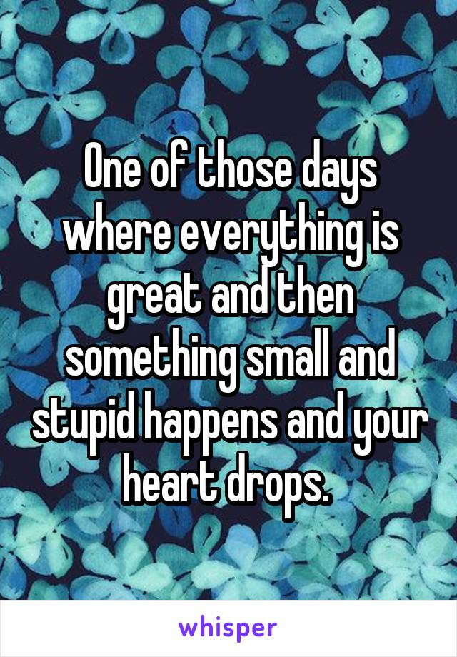 One of those days where everything is great and then something small and stupid happens and your heart drops.
