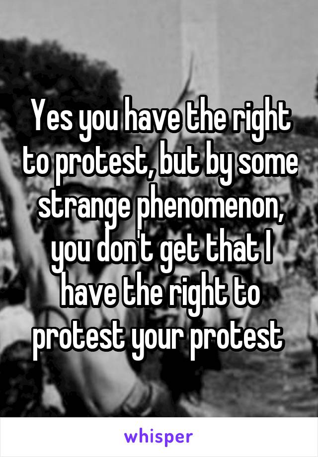 Yes you have the right to protest, but by some strange phenomenon, you don't get that I have the right to protest your protest