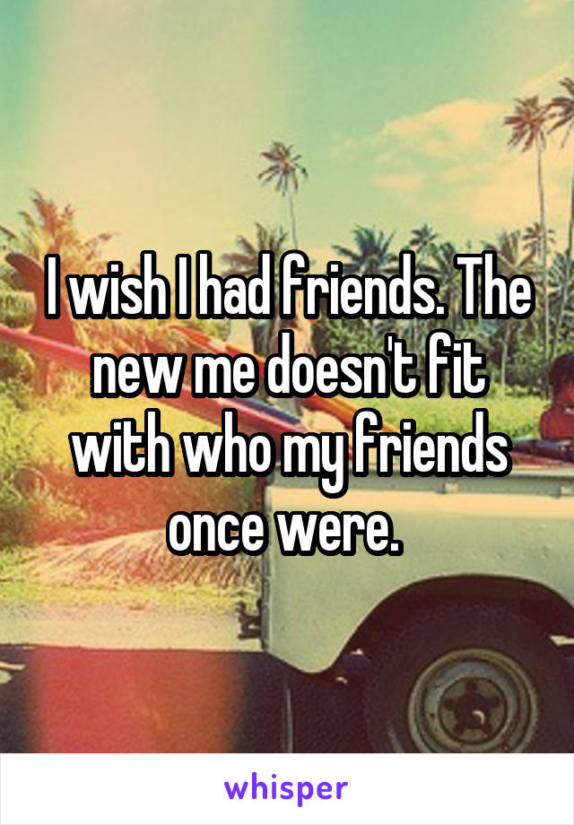 I wish I had friends. The new me doesn't fit with who my friends once were.