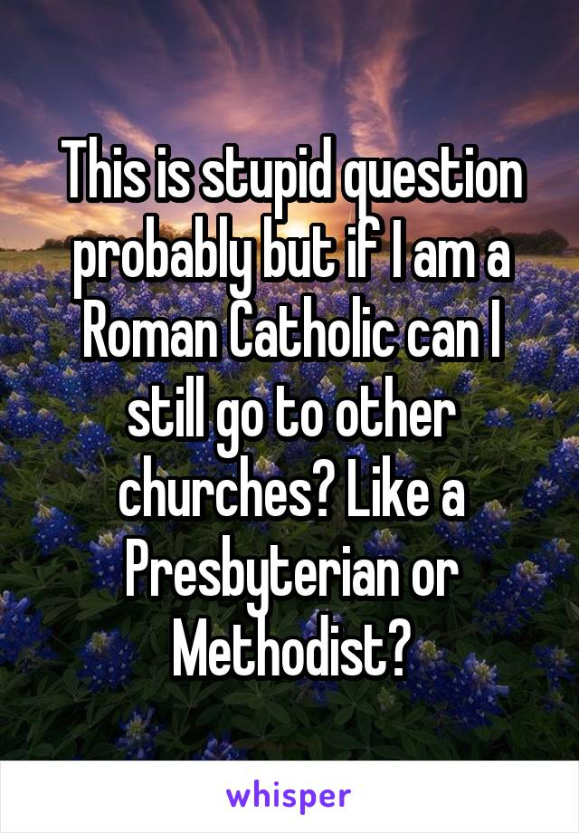 This is stupid question probably but if I am a Roman Catholic can I still go to other churches? Like a Presbyterian or Methodist?