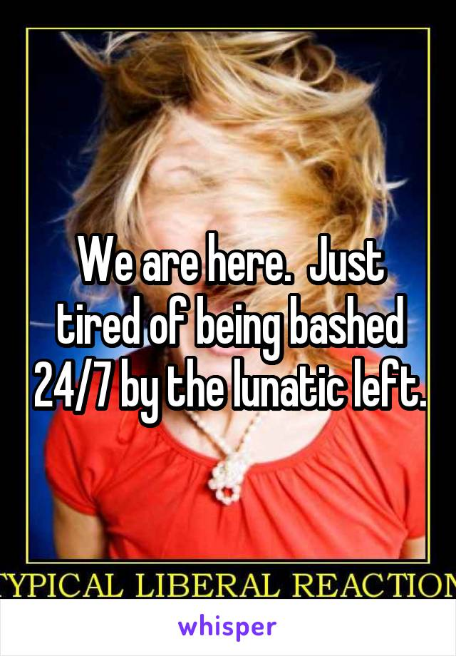 We are here.  Just tired of being bashed 24/7 by the lunatic left.
