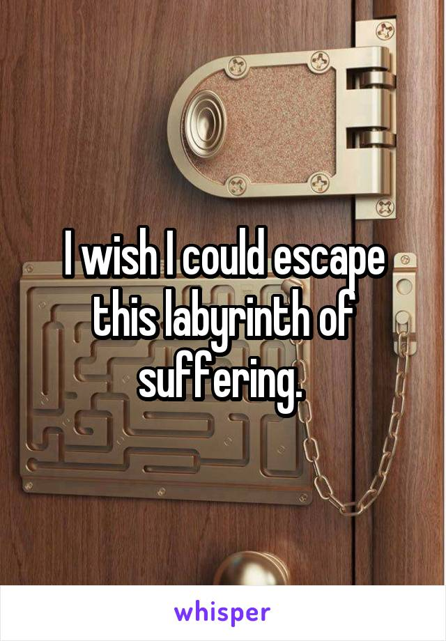 I wish I could escape this labyrinth of suffering.