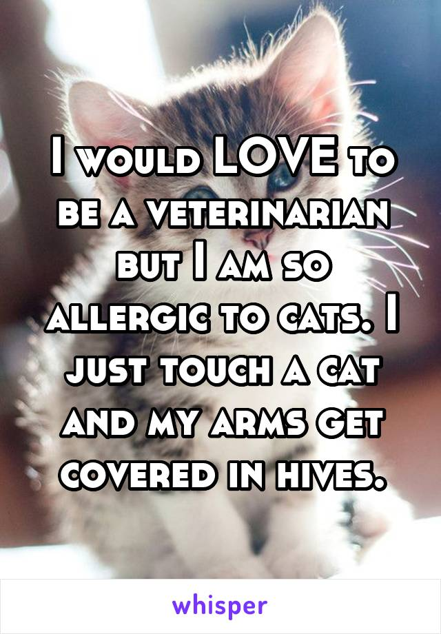 I would LOVE to be a veterinarian but I am so allergic to cats. I just touch a cat and my arms get covered in hives.