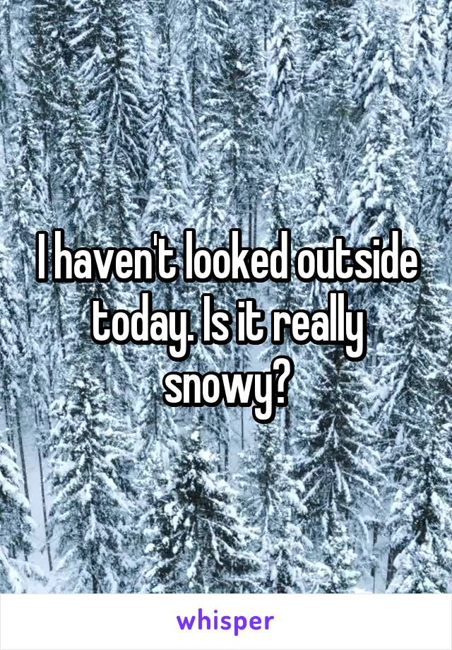 I haven't looked outside today. Is it really snowy?