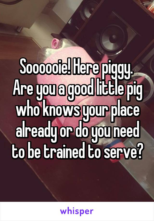 Soooooie! Here piggy.  Are you a good little pig who knows your place already or do you need to be trained to serve?