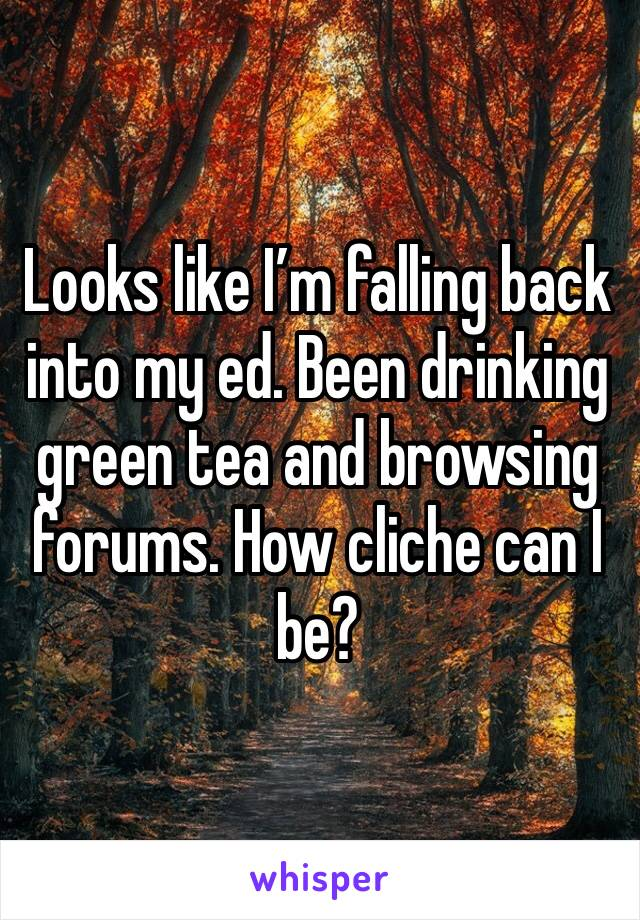 Looks like I'm falling back into my ed. Been drinking green tea and browsing forums. How cliche can I be?