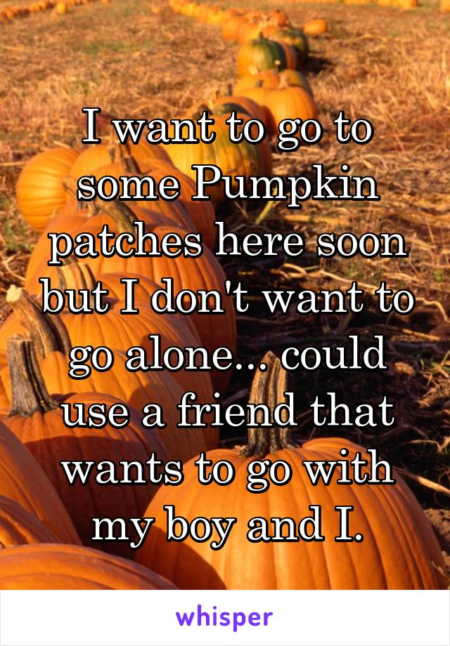 I want to go to some Pumpkin patches here soon but I don't want to go alone... could use a friend that wants to go with my boy and I.