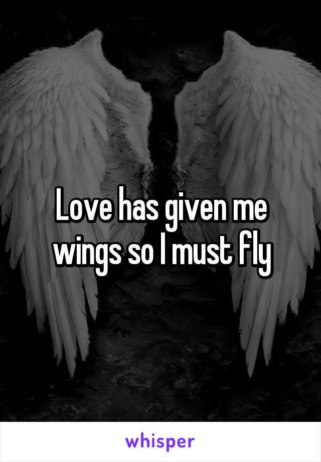 Love has given me wings so I must fly