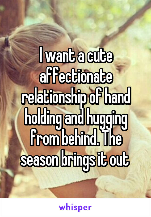 I want a cute affectionate relationship of hand holding and hugging from behind. The season brings it out