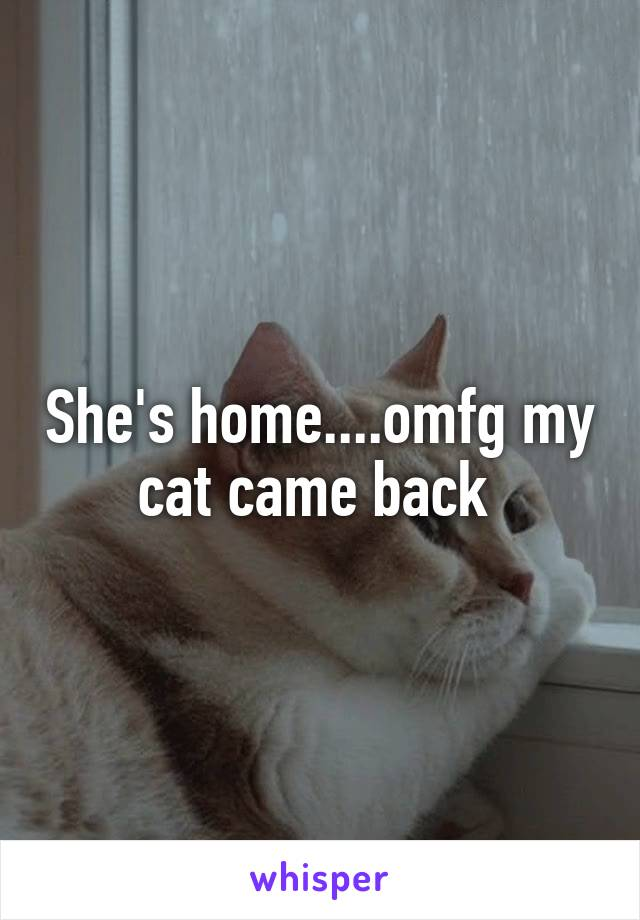 She's home....omfg my cat came back