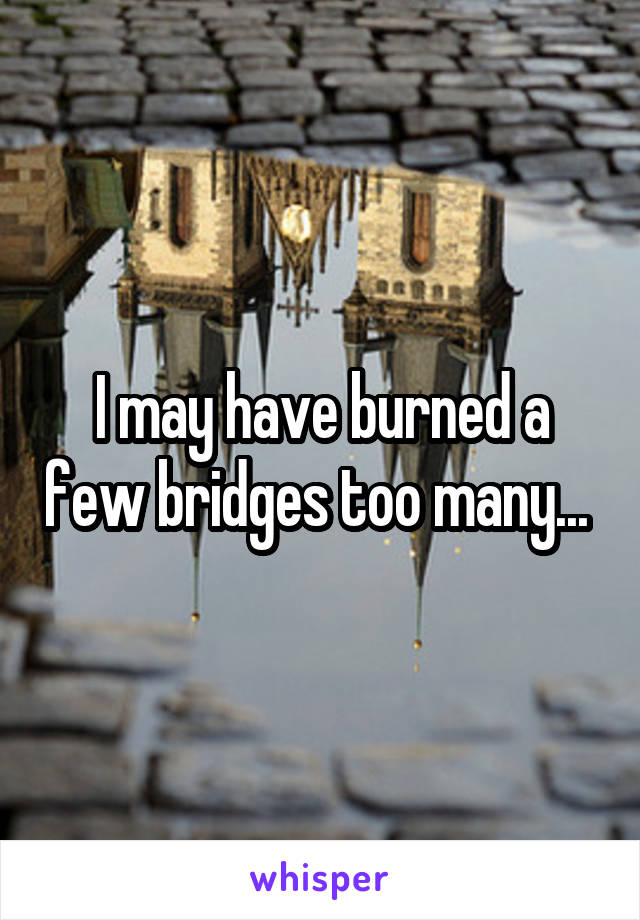 I may have burned a few bridges too many...