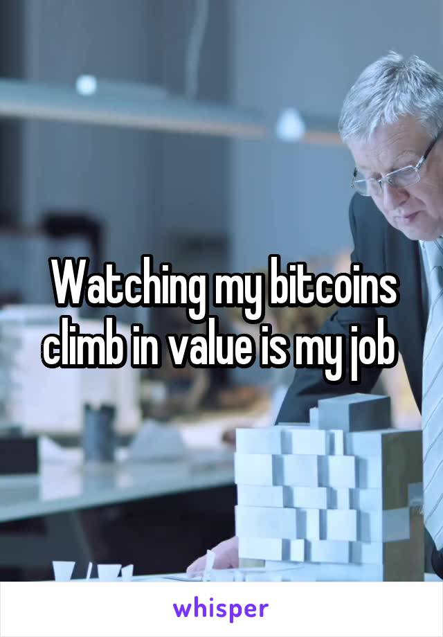 Watching my bitcoins climb in value is my job