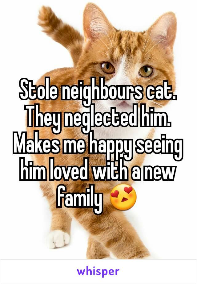 Stole neighbours cat. They neglected him. Makes me happy seeing him loved with a new family 😍