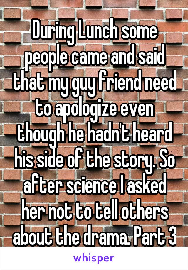 During Lunch some people came and said that my guy friend need to apologize even though he hadn't heard his side of the story. So after science I asked her not to tell others about the drama. Part 3