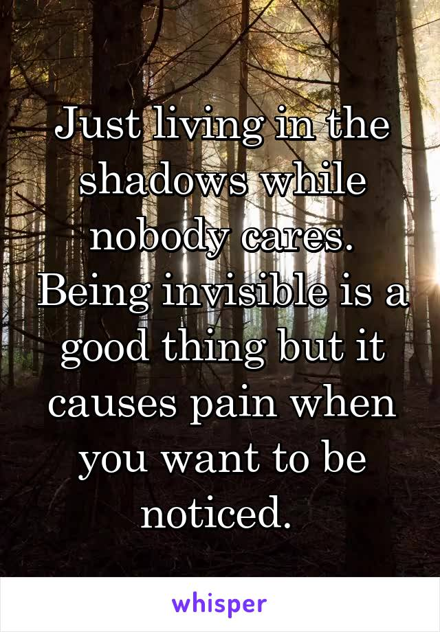 Just living in the shadows while nobody cares. Being invisible is a good thing but it causes pain when you want to be noticed.
