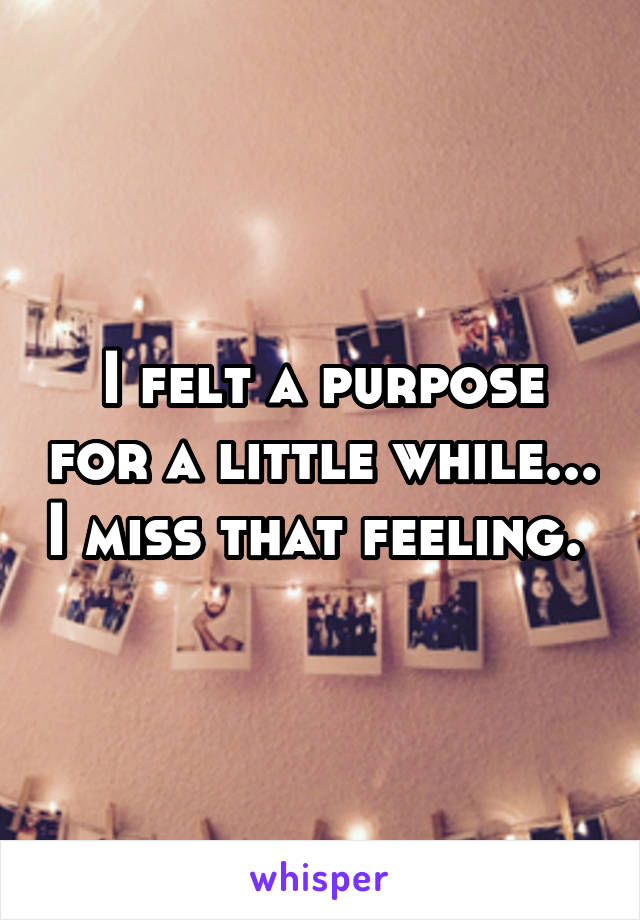 I felt a purpose for a little while... I miss that feeling.