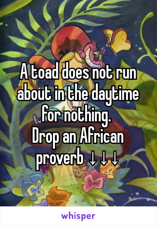 A toad does not run about in the daytime for nothing.  Drop an African proverb ↓↓↓